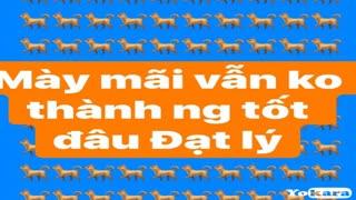 KARAOKE Lỡ Chuyến Đò Ngang   Hồng Phượng-Huỳnh Thâtj